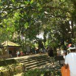 ティルタウンプル寺院で沐浴!